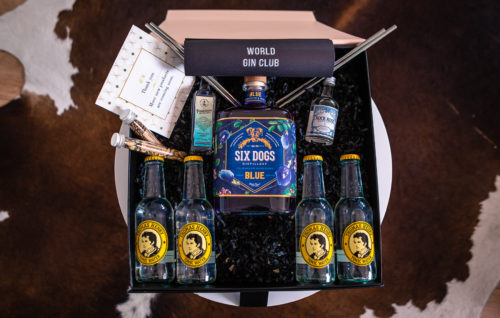 Gin & Tonic (G&T) Boxes for You and Your Friends