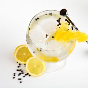 Nikka Coffey Gin - Intense, Citrusy Gin