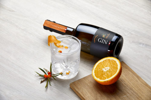 Trolden Copperpot Gin-The Citrus Gin