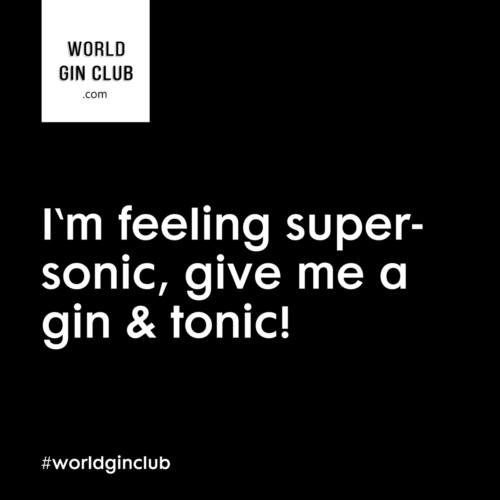 013 WGC Supersonic schwarz