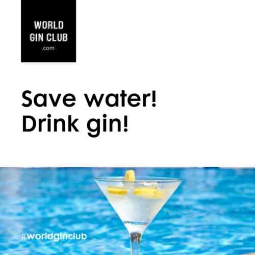 025 WGC Save-water Bild unten