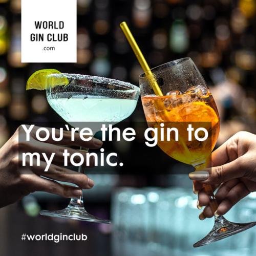 033 WGC Gin-to-my-tonic Bild