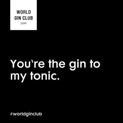 034 WGC Gin-to-my-tonic schwarz