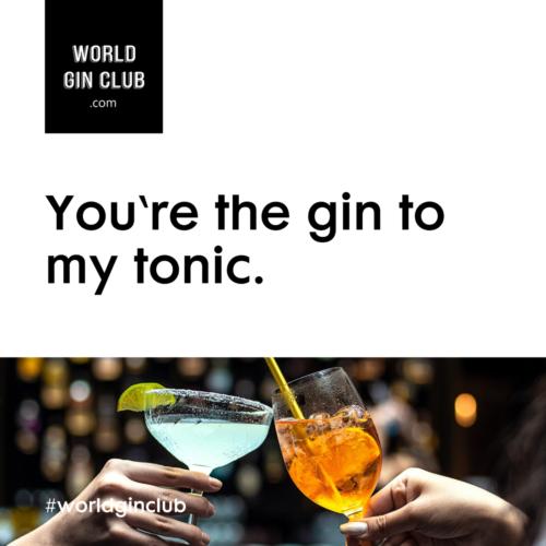 035 WGC Gin-to-my-tonic Bild unten