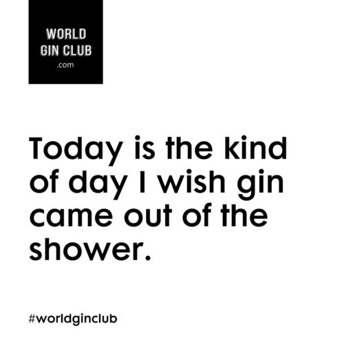 114 WGC Shower weiß
