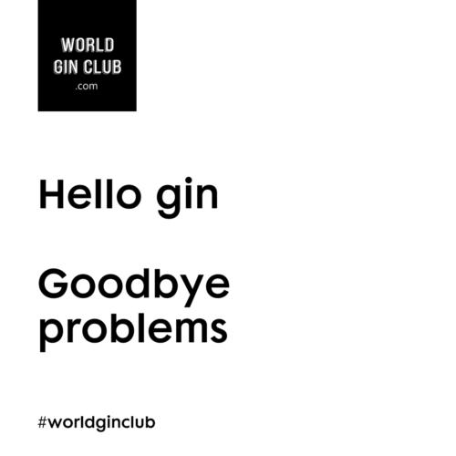 183 WGC Goodbye-problems weiß